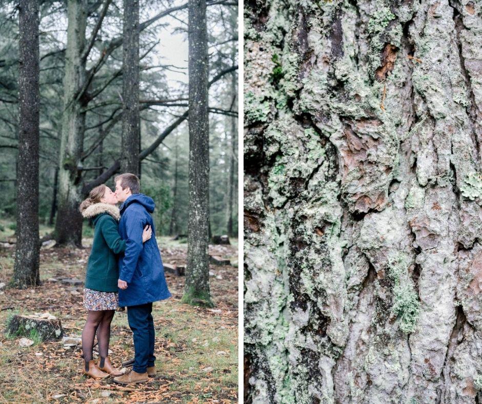 Couple s'embrassant dans la foret des Cèdres en plein coeur du Lubéron pour leur séance engagement